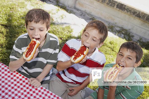 Hot Dog Hot Dogs Jugendlicher Junge - Person 2 essen essend isst