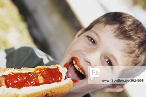 Hot Dog Hot Dogs Portrait Junge - Person essen essend isst