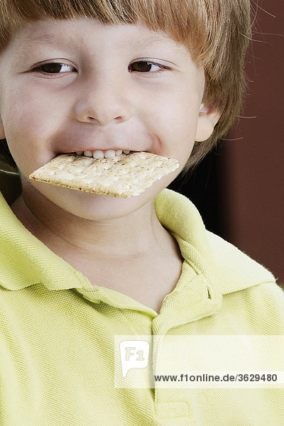 Nahaufnahme eines jungen Keks in den Mund halten