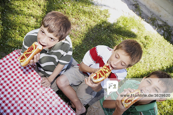 Two boys and a teenage boy eating hot dogs