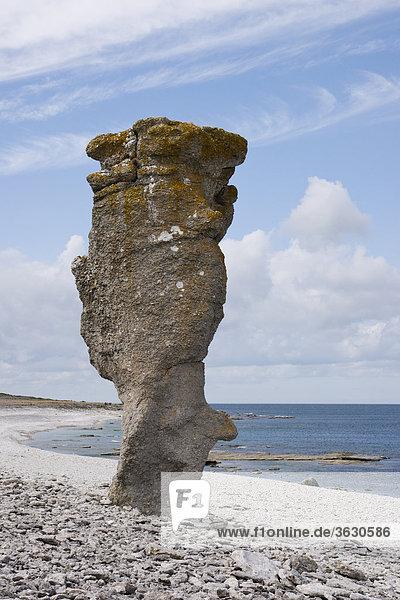 Rauk bei Langhammars auf der Insel Farö  Gotland  Schweden