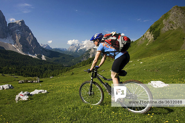 Mountain bike rider on the descent from Forcella Ambrizzola mountain  Alto Adige  Italy  Europe