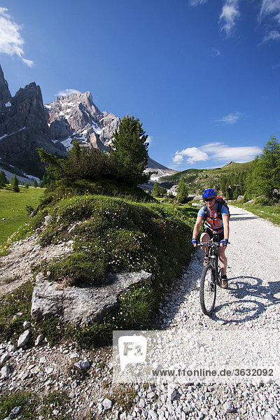 Mountain bike rider  Val Venegia  Alto Adige  Italy  Europe