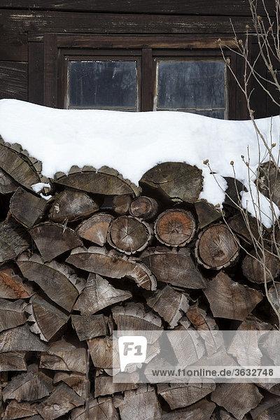 Ein Stapel Kaminholz vor einer Hütte im Spreewald  Brandenburg  Deutschland  Europa