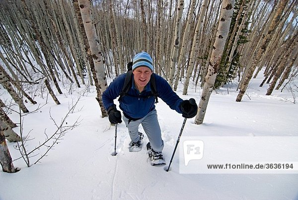 Mark Weber snowshoeing above Rock Creek Canyon high in the Goose Creek Mountains of southern Idaho USA