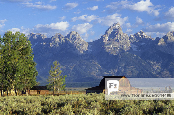 Old farm in front of the Grand Tetons mountains  Wyoming  USA