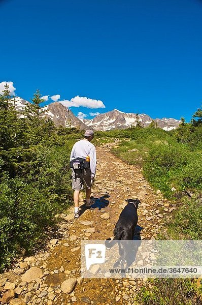 Fourth of July trail in the Rocky Mountains  near Nederland  Colorado USA