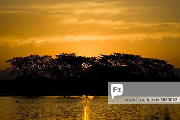 Sonnenuntergang  Mkhuze Nationalpark  Südafrika  Afrika