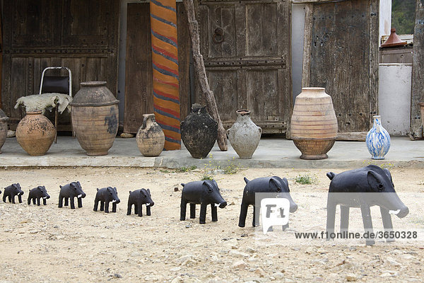Wildschweine als Souvenirs  Marokko  Afrika