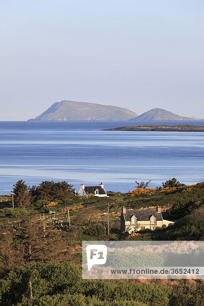 Küstenlandschaft nahe Eyeries  Beara-Halbinsel  County Cork  Irland  Britische Inseln  Europa