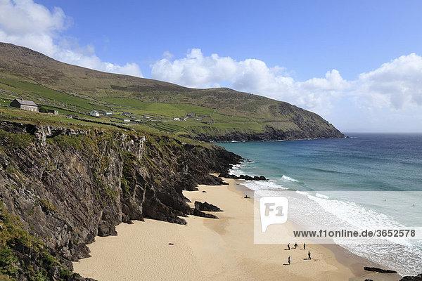 Strand am Dunmore Head  hinten Slea Head  Dingle Halbinsel  County Kerry  Irland  Britische Inseln  Europa