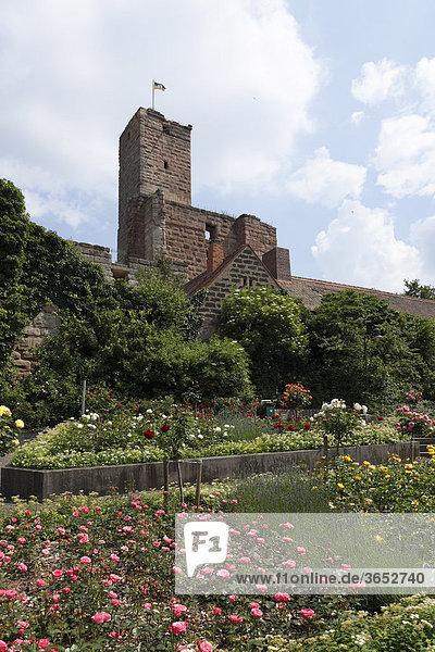 Burg und Rosengarten  Hilpoltstein  Mittelfranken  Franken  Bayern  Deutschland  Europa