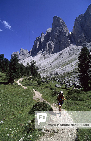 Climber on the Adolf-Munkel-Weg trail  Naturpark Puez-Geisler nature park  Dolomites mountain range  South Tyrol  Italy  Europe