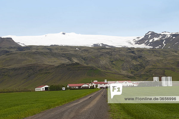 Seljalandsfoos  Bauernhof  Gletscher  Island  Europa