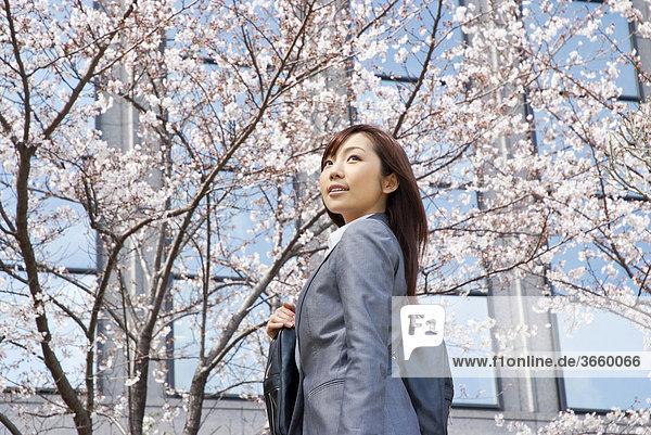 Businesswoman standing under cherry blossom tree