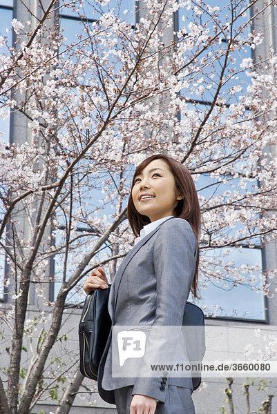 Geschäftsfrau steht unter blühendem Kirschbaum