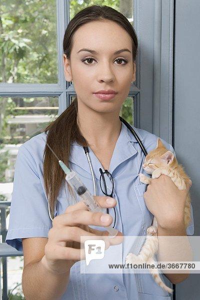 Weibliche Vet Injektion eine Katze