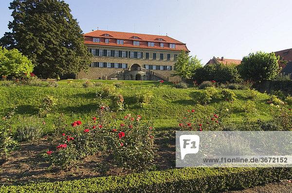 Castell Kreis Kitzingen Unterfranken Bayern Deutschland Schloss der Fürsten von Castell-Castell Nordseite