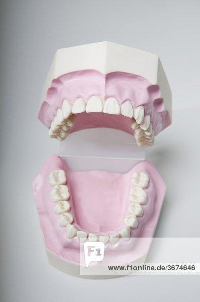 Nahaufnahme eines Satzes von Zahnersatz