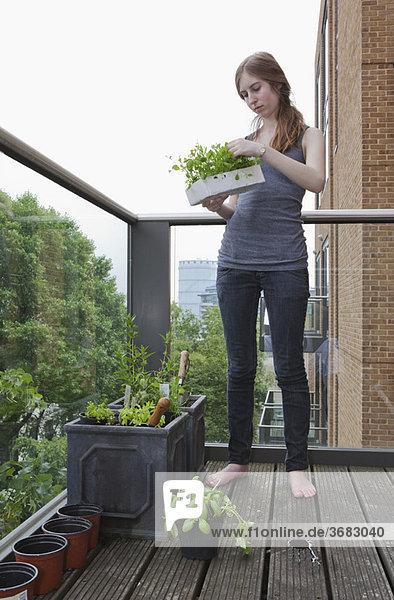 Junge Frau beim Auspflanzen von Sämlingen