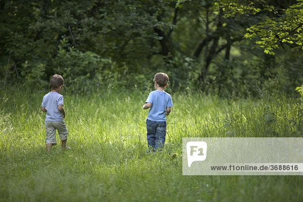 Zwei kleine Jungen  die im Sommer im Freien spazieren gehen.