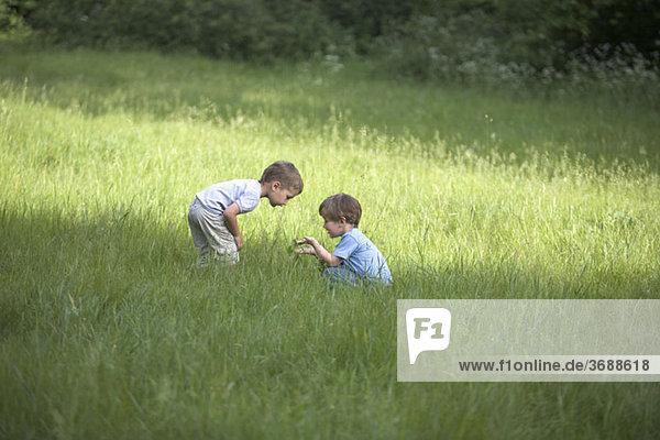Zwei kleine Jungen auf einem Feld