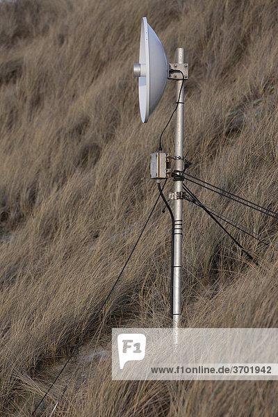 Eine Antenne in den Dünen von Westerland auf Sylt  Schleswig-Holstein  Deutschland  Europa