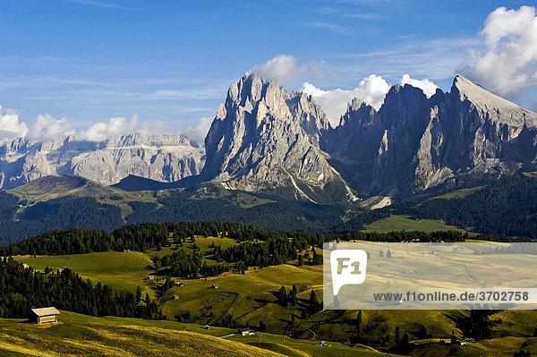 Blick über die Seiser Alm  Richtung Langkofel und Plattkofel  dahinter die Sella-Gruppe  Dolomiten  Südtirol  Italien  Europa