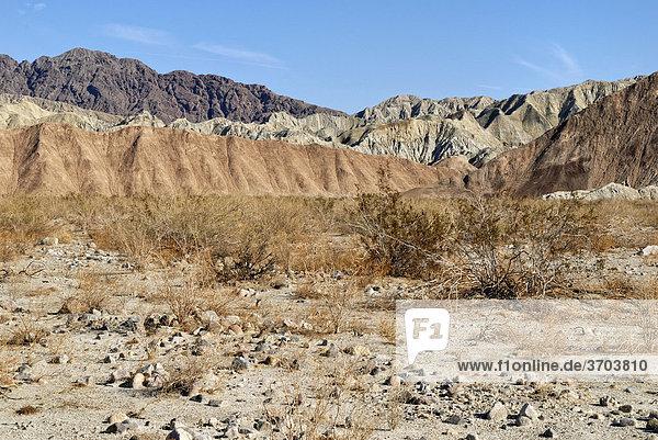 Wüstenlandschaft vor den Mecca Hills  südöstlich von Indio  Südkalifornien  USA