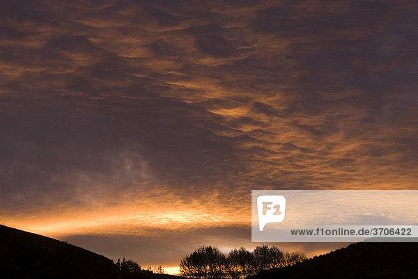 Sonnenuntergang über Wellington  Neuseeland