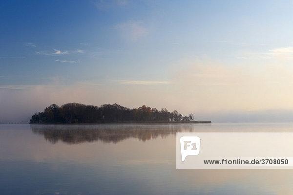 Insel im Wörthsee  Morgenstimmung  Oberbayern  Deutschland  Europa