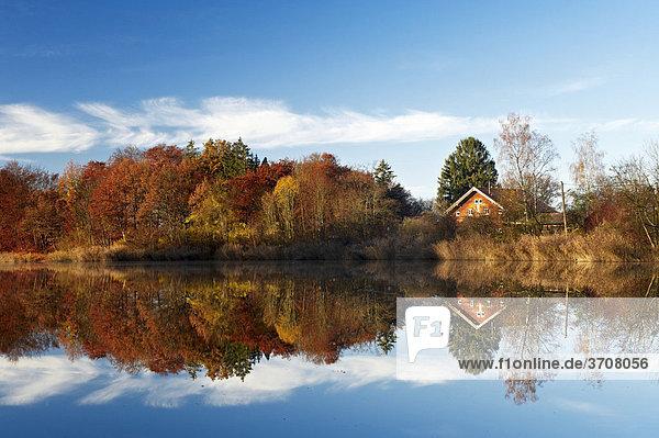 Moorsee lake at Widdersberg  Herrsching am Ammersee  Upper Bavaria  Germany  Europe