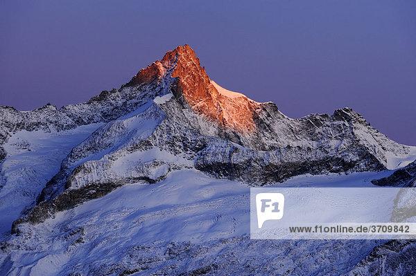 Zinalrothorn im Morgenrot  Zermatt  Wallis  Schweiz  Europa