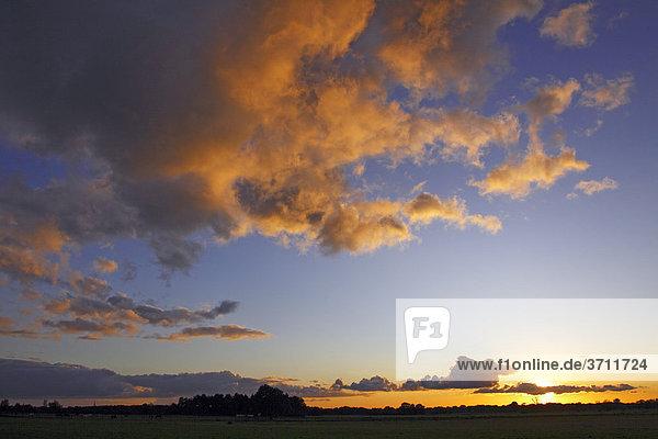 Dramatischer Himmel mit von unten angestrahlten Wolken im letzten Abendlicht bei Sonnenuntergang  Landschaft im Naturschutzgebiet Oberalsterniederung  Tangstedt  Schleswig-Holstein  Deutschland  Europa