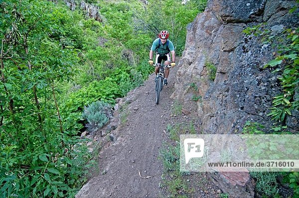 Dave Weber mountain biking the Wahlstrom Hollow Trail in the Goose Creek Mountains of southern Idaho