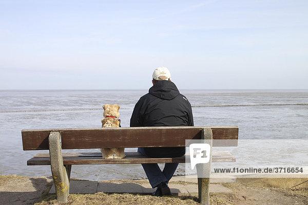 Mischlingshund und Mann - sitzend auf Bank - schauen auf Meer Mischlingshund