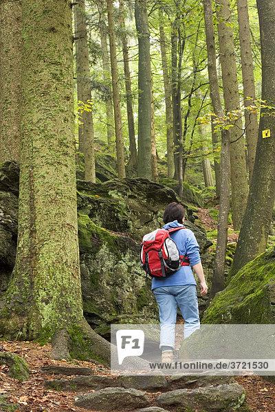Wanderin im Nationalpark Bayerischer Wald - Felswandergebiet am Steinberg - Niederbayern