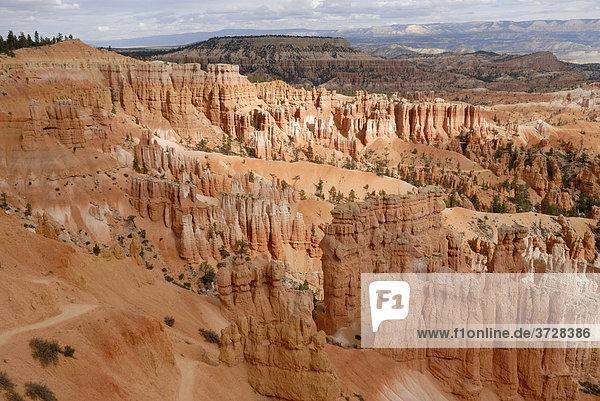 Kalksteinsäulen  sog. Hoodoos im Bryce Canyon National Park  Utah  USA