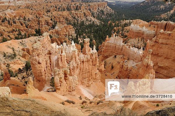 Felsformation The Castle  Bryce Canyon National Park  Utah  USA