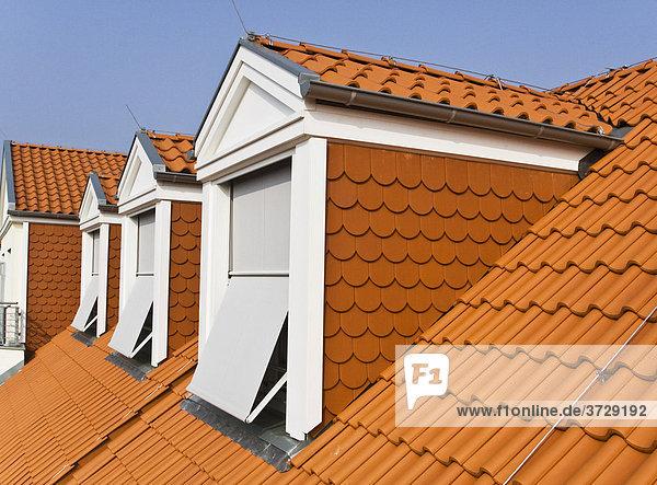 Dachgeschosswohnungen in einem Haus in Berlin  Deutschland