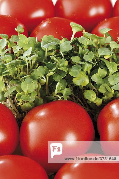 Tomaten und Kresse