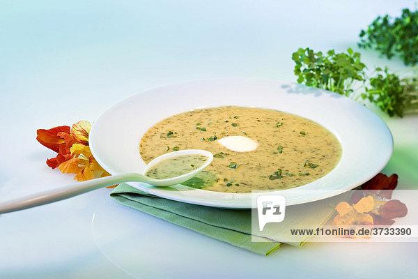 Kresse-Creme-Suppe
