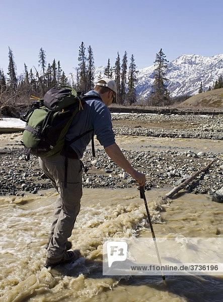Wanderer überquert den Sheep Creek Fluss und stützt sich mit Wanderstöcken ab,  Slims River Valley Flusstal,  Kluane Nationalpark,  Yukon Territory,  Kanada