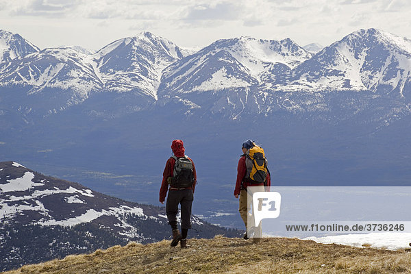 Two woman hiking  Mt. Lorne  Mountains  Pacific Coast Ranges behind  Yukon Territory  Canada  North America