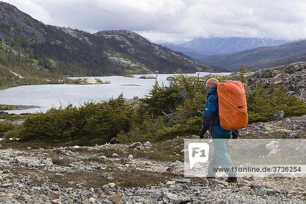 Wanderin  Rucksackreisende wandert durch die alpine Landschaft  hinten der Deep Lake Zeltplatz  Chilkoot Trail  Chilkoot Pass  Yukon Territory  British Columbia  Kanada