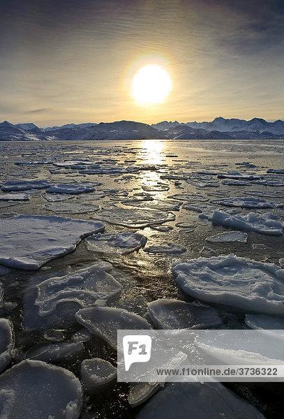 Pfannkuchen-Eis auf Meer bei Sisimiut,  Grönland