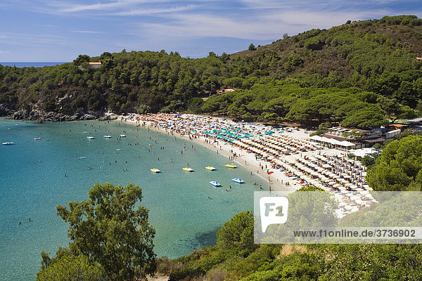 Beach of Fetovaia  Island of Elba  Tuscany  Italy  Mediterranean Sea  Europe