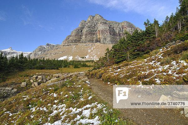 Wanderweg am Logan Pass  Hauptbesuchspunkt im Glacier National Park  Montana  USA  Nordamerika