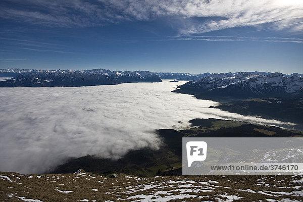 Blick in das obere Rheintal  Schweiz  Europa