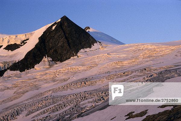 Schlatenkees  Eisfeld des Großvenediger Gletschers  Ausblick von der neuen Prager Hütte  Venedigergruppe  Hohe Tauern  Tirol  Österreich  Europa